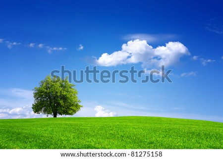 My mother - Earth - stock photo