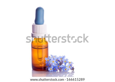 myosotis wildflower natural essence in a dropper