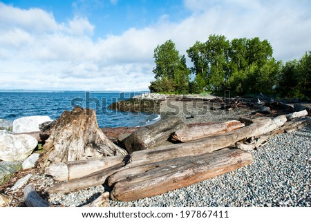 Myrtle Edwards Park in Seattle includes small beached areas. - stock photo