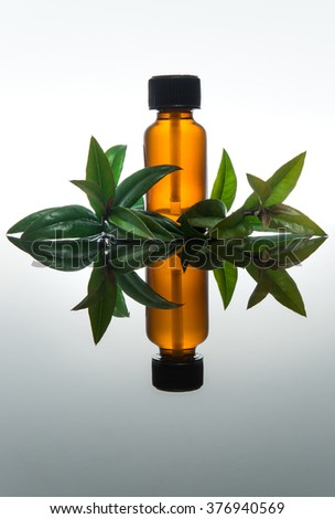 Myrtle essential oil with amber glass bottle, vertical with reflection - stock photo