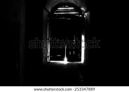 Mysterious door, secret entrance or exit - stock photo