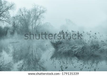 mysterious fog landscape - stock photo