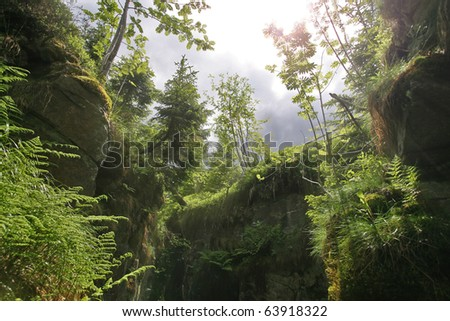 mysterious nature scenery with overgrown old mine - stock photo