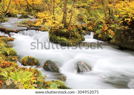 Mysterious Oirase Stream flowing through the autumn forest in Towada Hachimantai National Park in Aomori Japan - stock photo