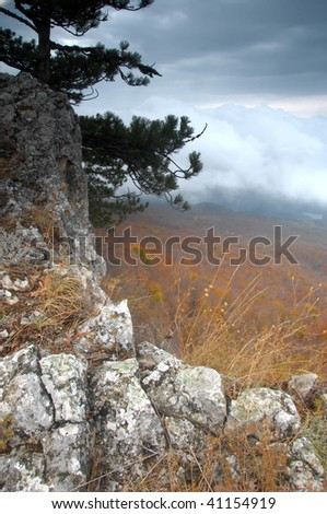 Mysterious rock with a view of foggy forest - stock photo