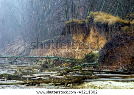 Mysterious shore of a river at a rainy day - stock photo