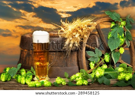 mysterious still life with glass of beer and raw material for beer production - stock photo
