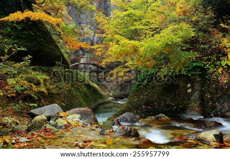 Mysterious Stream and bridge over a gorge in the autumn forest, Yamagata Japan - stock photo