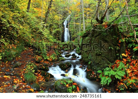 Mysterious waterfall in the autumn forest at Oirase in Towada Hachimantai National Park, Aomori, Japan - stock photo