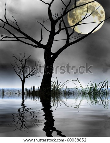 mysterious world: silhouette of a tree in a swamp - stock photo