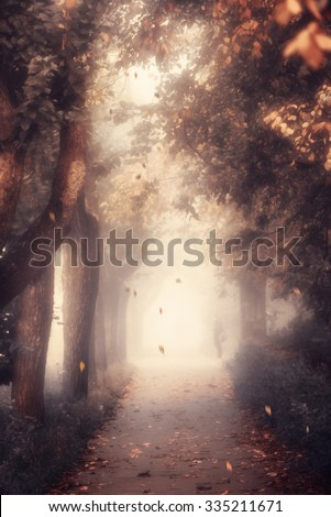 Mystic alley and lonely man in the fog toned blurred shot.