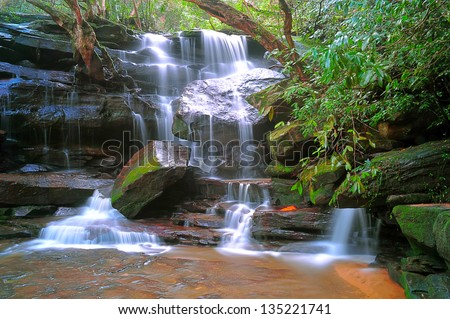 mystic serene flowing tropical rainforest waterfall Somersby Falls , Gosford, New South Wales, Australia
