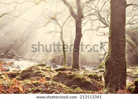 Mystical Dartmoor background with instagram style filter - stock photo