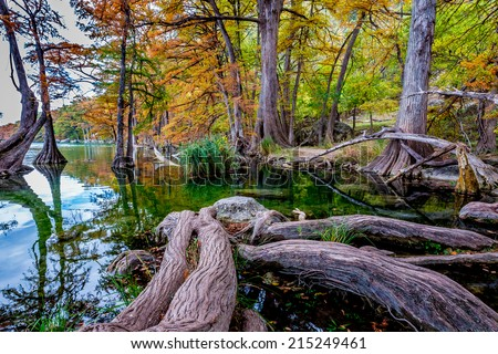 Mystical Fall Foliage Surrounding the Clear Frio River, Texas. - stock photo