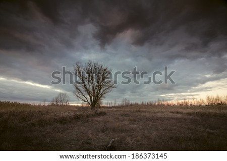 Mystical landscape with dramatic moody stormy sky - stock photo