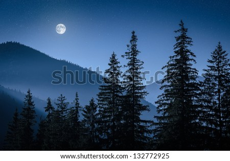 mystical moon over mountains and firs - stock photo