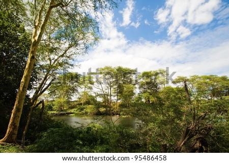 Mzima Springs in Tsavo National Park, Kenya - stock photo
