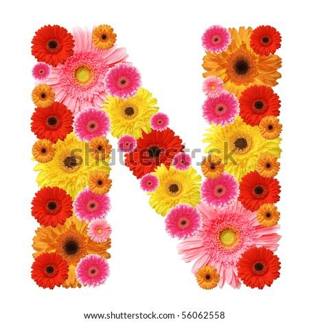 N, flower alphabet isolated on white - stock photo