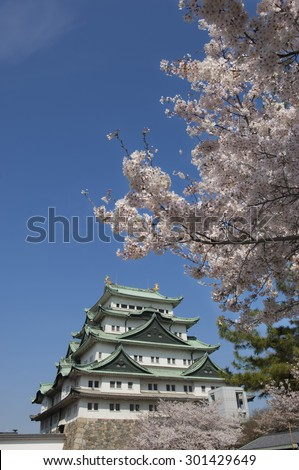 Nagoya Castle and cherry blossoms