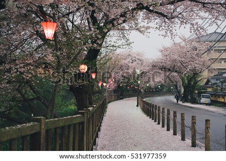NAGOYA, JAPAN - APRIL 6, 2015: Nagoya street with cherry blossoms and lanterns