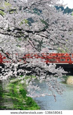 Nakabashi Bridge of Takayama, Japan - stock photo