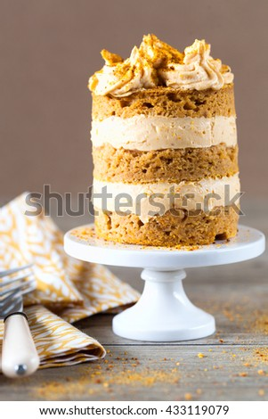 Naked Layer Cake - stock photo
