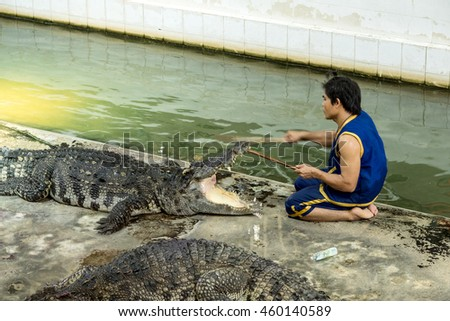 "Nakhon pathom,Thailand-17 JULY: ""Show of crocodiles"" performer sit infront of the crocodile before puts his head in crocodile mouth during a show in a zoo on July 17, 2016 in Nakhon pathom, Thailand"