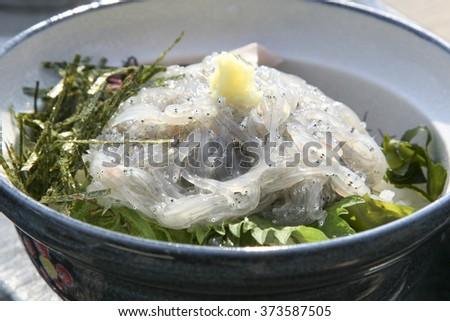 Nama-Shirasudon, Japanese food - stock photo