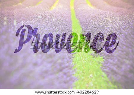 Name Provence written on a summer lavender field background - stock photo