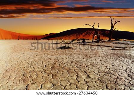 Namib Desert - stock photo