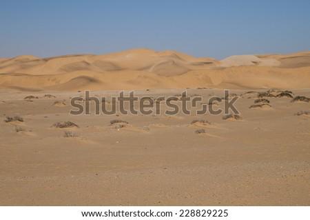 Namib Desert near Swakopmund, Namibia, Africa - stock photo