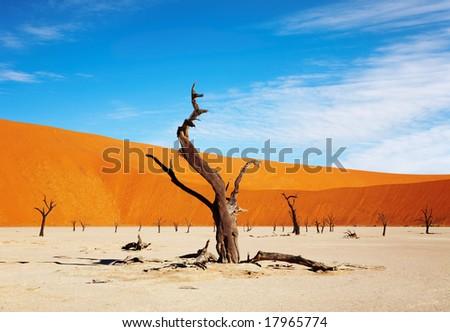 Namib Desert, Sossusvlei, Namibia - stock photo