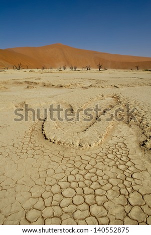 Namibia Dead Valley, cracked dry land