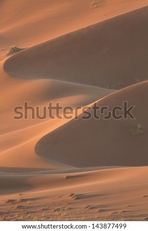Namibian desert. Boundless open spaces under the hot sun of Africa. Huge dunes and savannas with bushes and acacias. - stock photo