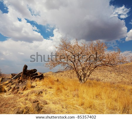 Namibian  landscapes - stock photo