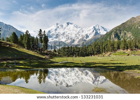 Nanga Parbat reflected in a pond at Fairy Meadows. The world's ninth highest mountain towering above idyllic alpine scenery in Northern Pakistan. - stock photo