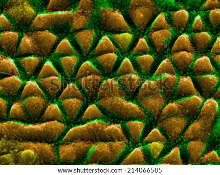 nanostructures on nickel produced by interfering laser beams - stock photo