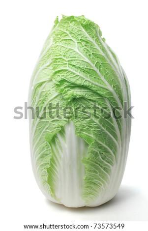 Napa cabbage - stock photo