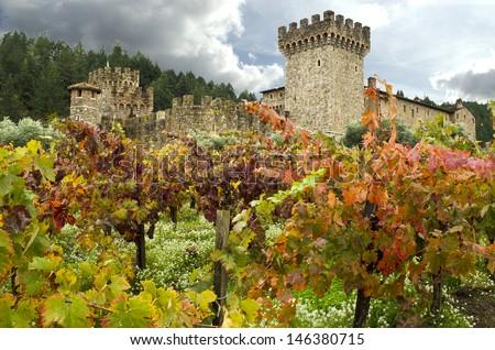 Napa Winery - stock photo