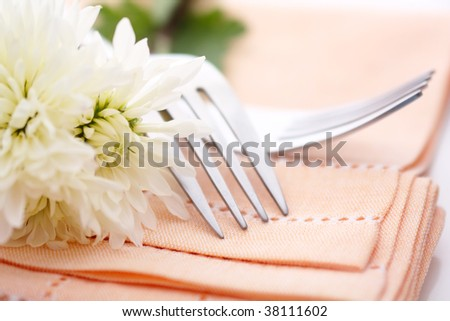 Napkin on wedding table - stock photo