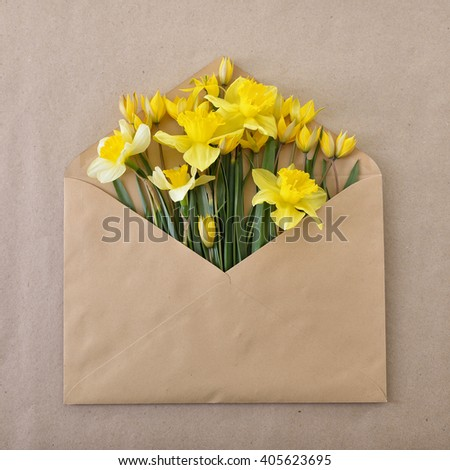 Narcissus. Envelope with spring flowers over rough paper. Springtime design background
