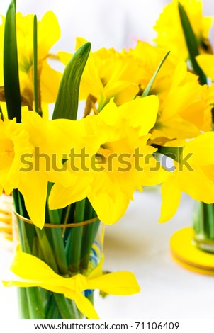 narcissus in vase - stock photo