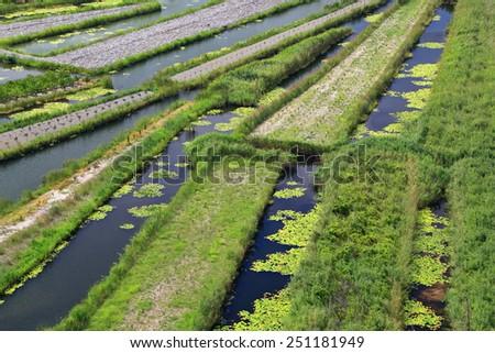 Narrow canals between green farming land in the Neretva delta, Croatia - stock photo