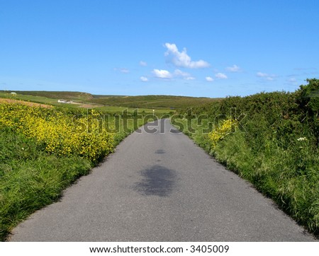 Narrow country road and a blue sky, Cornwall, UK. - stock photo