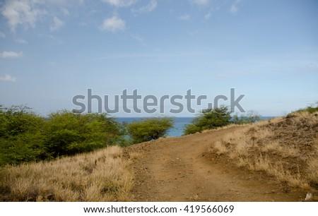 Narrow road near Hapuna beach, Big Island, Hawaii - stock photo