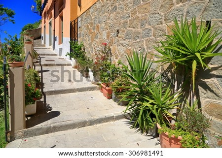 Narrow street ascending along old buildings and decorative plants in sunny village of Riomaggiore, Cinque Terre, Italy - stock photo