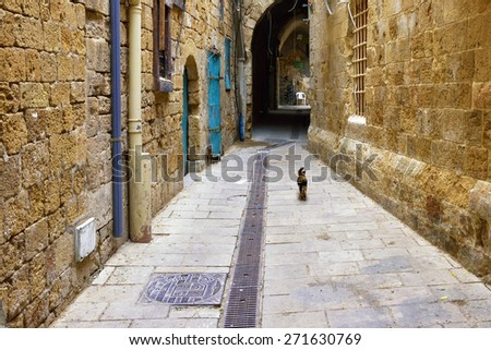 Narrow street in the arab quarter of the old city of Akko, Israel - stock photo