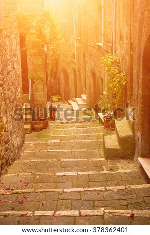 Narrow street of medieval tuff city Pitigliano with green plants and cobblestone stairs, travel Italy sunny vintage  background - stock photo