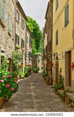 Narrow street with flowers in Italy - stock photo