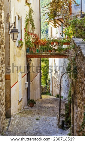 Narrow street with flowers in the old village Coaraze in France - stock photo